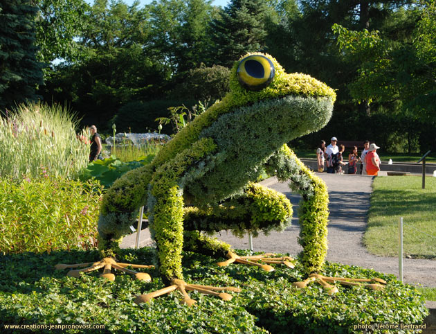 Frog, grenouille, Mosaiculture