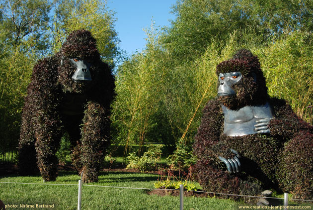 Monkey Mosaiculture, Montreal