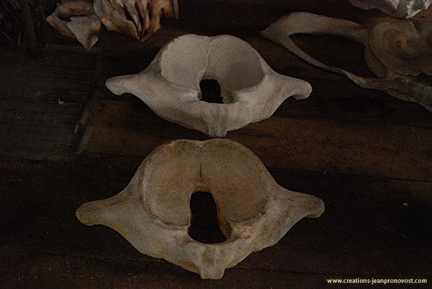 Moulage d'ossements de baleine - sculpture et moulage Montréal