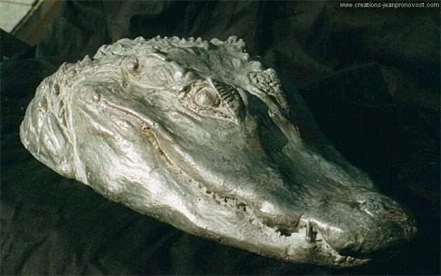 Faux fini d'argent sur tête de crocodile