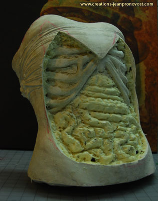 The bus twas molded on an actor and was cut to let see the sculpted ribcage. We can see some organs which were sculpted and will then be painted to give an organic texture.